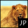 Lion Jigsaw Puzzle