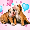 Cute Puppies Jigsaw Puzzle