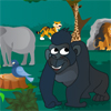 Gorillas In The Jungle