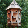 Jigsaw: Bird House