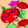 Kid's coloring: Garden beetle