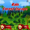 Rain Forest Escape