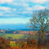 Jigsaw: England Landscape