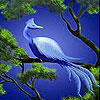 Blue historic bird slide puzzle