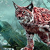 Beauty forest lynxes puzzle